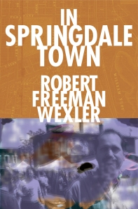 cover for ebook of in springdale town